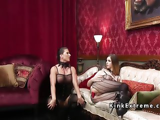 Lesbians in fishnets anal toying